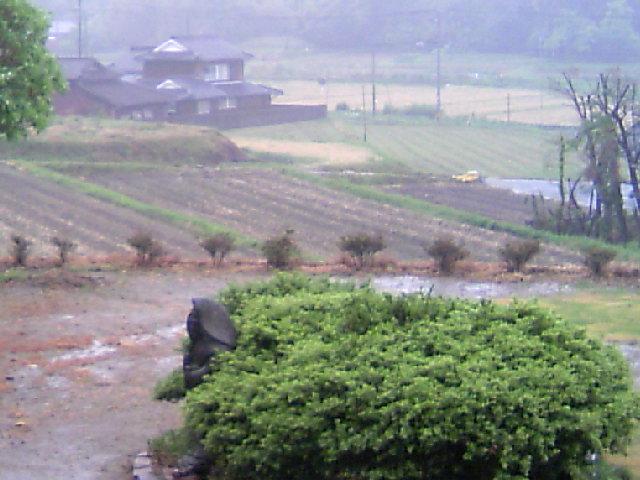 雨、、、。