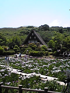 宮地嶽神社。