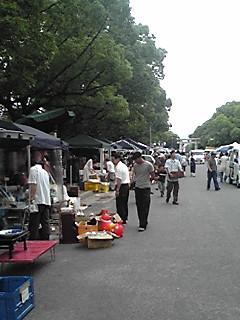 箱崎骨董市。