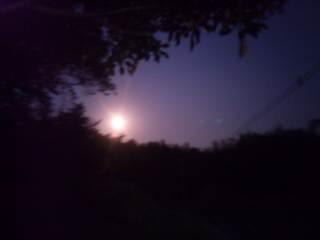 お月様をみてね。