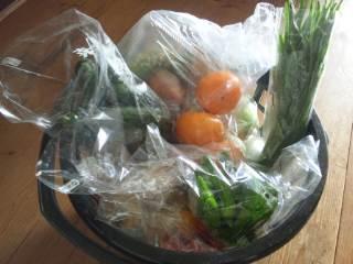 新鮮な野菜。